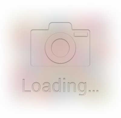 Lecien Princess Rose 2017 - Charm Pack